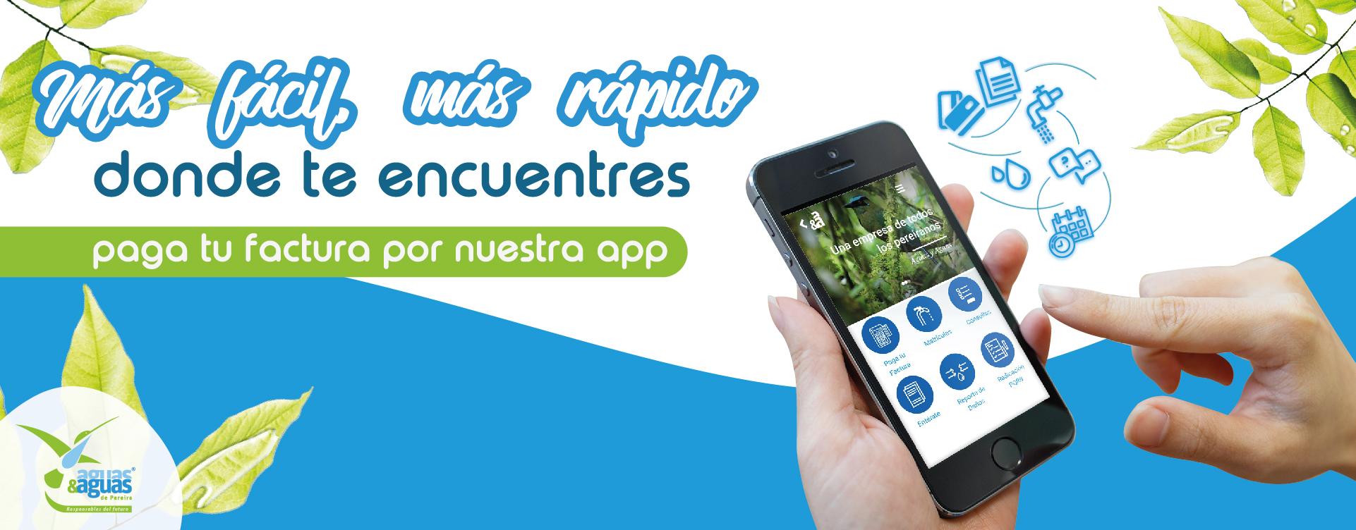 app02019